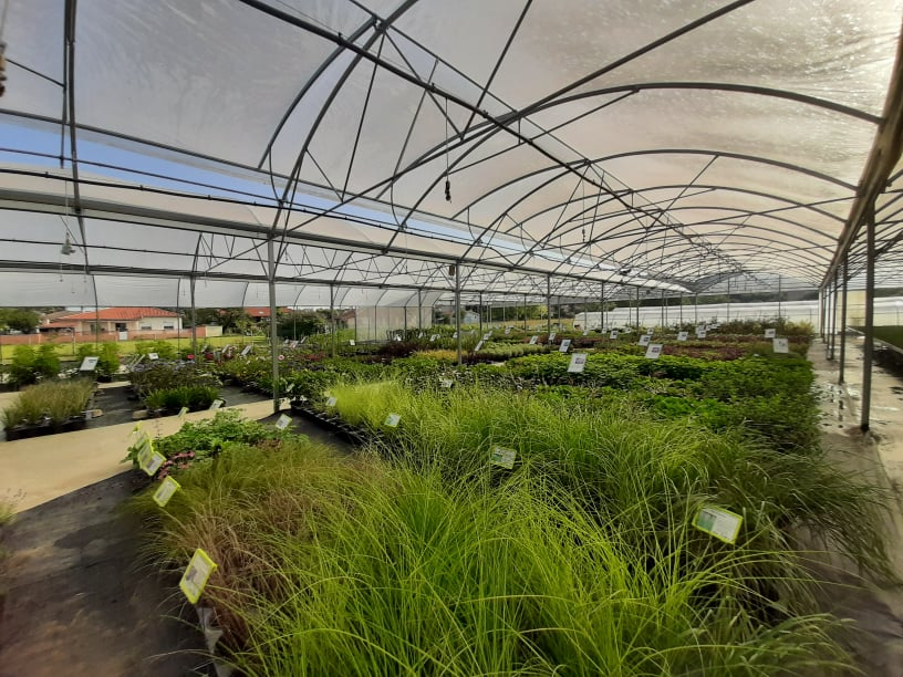 Horticulture  Dumont